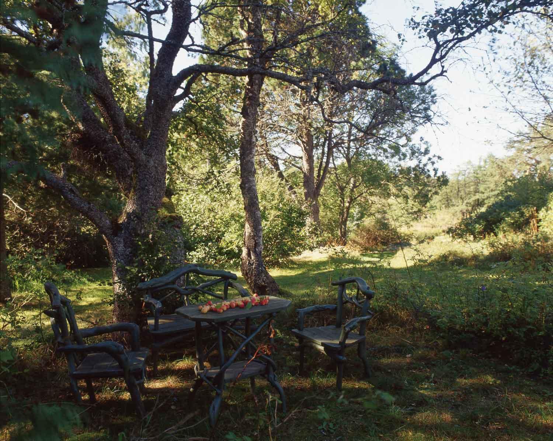 Sarvilinna-puutarha-0.jpg