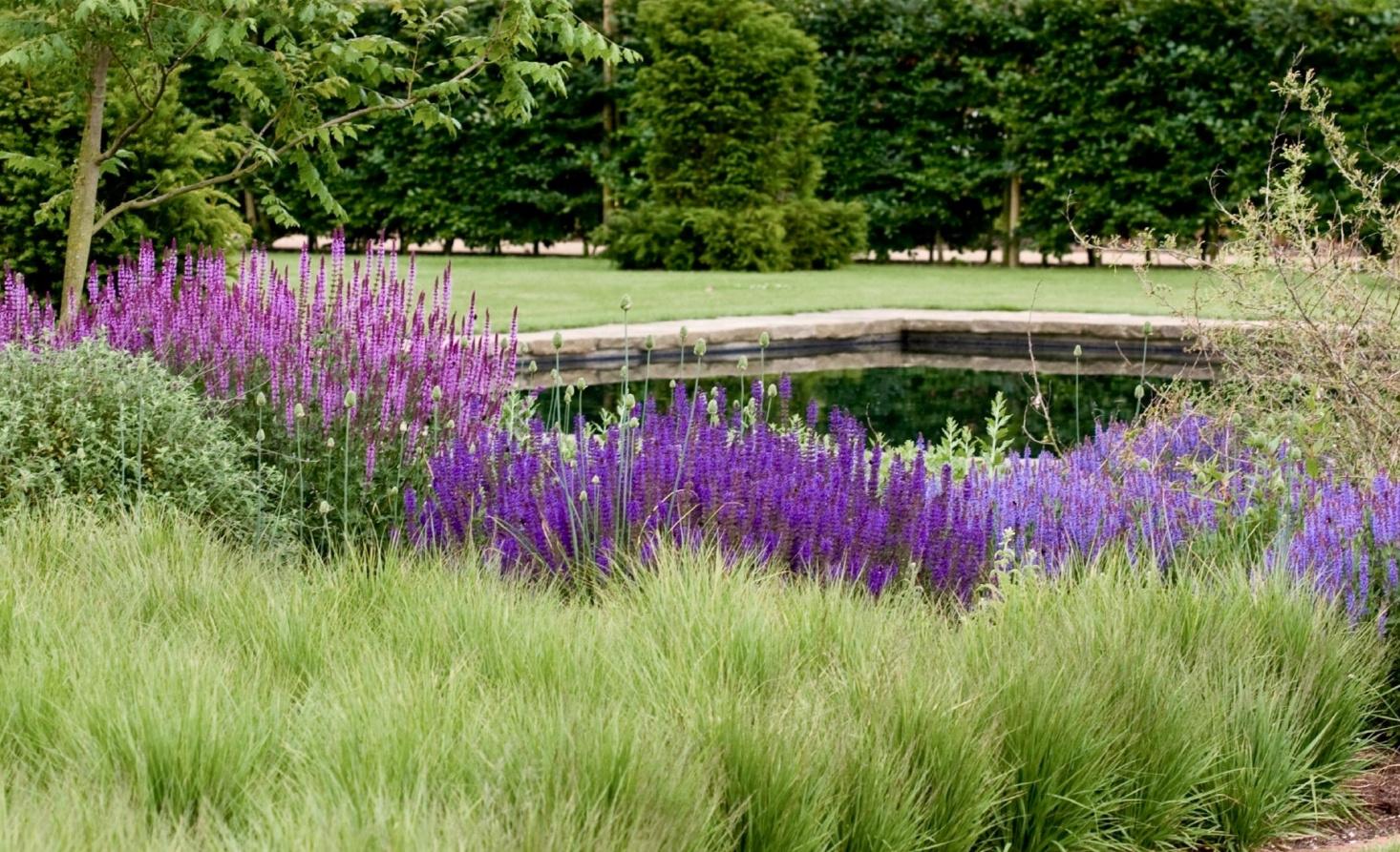 scampston-garden-yorkshire-perennial-grasses-piet-oudolf-alh1-flickr-1466x893.jpg