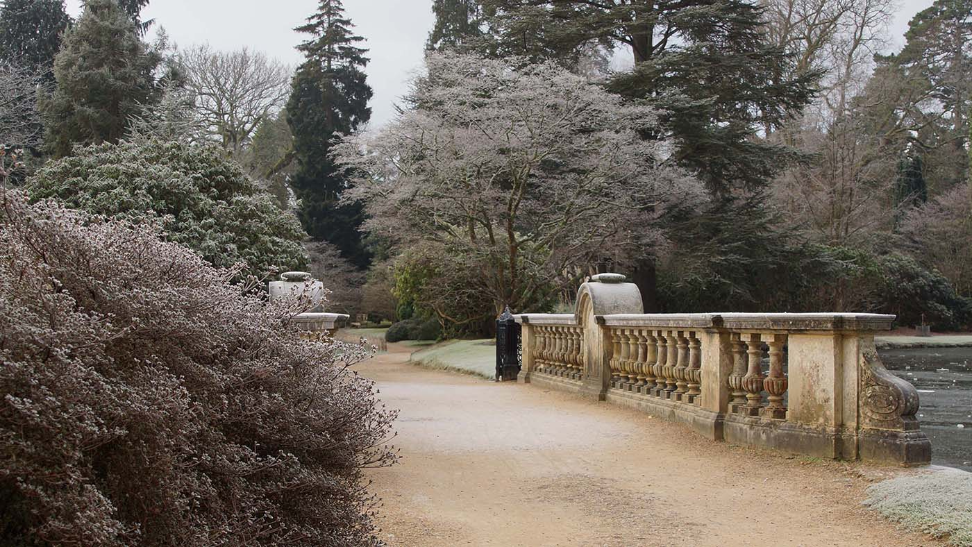 Sheffield Park December 2015 139NEN.jpg