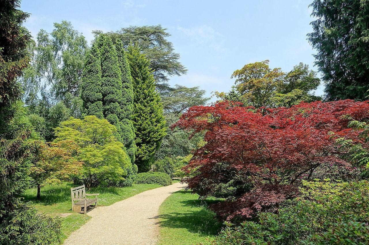 Sheffield_Park_and_Garden_-_East_Sussex,_England_-_DSC05737.jpg
