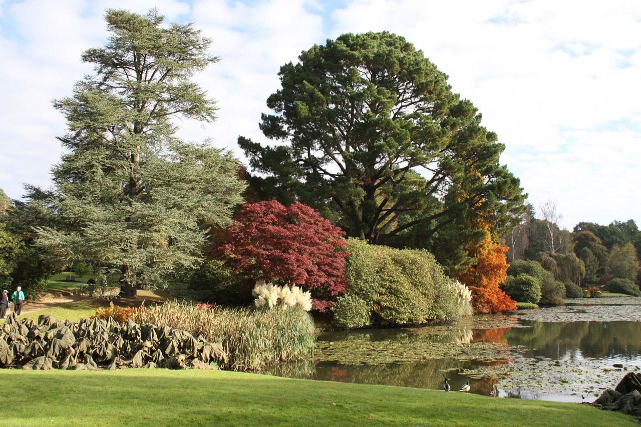 Sheffield_Park_and_Gardens-5106132674.jpg