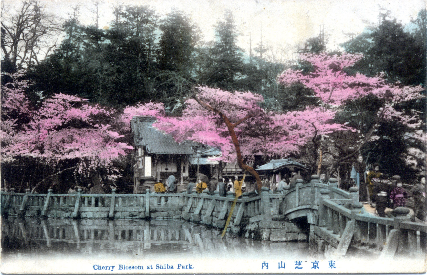 shiba-park-blossoms-pond-300.jpg