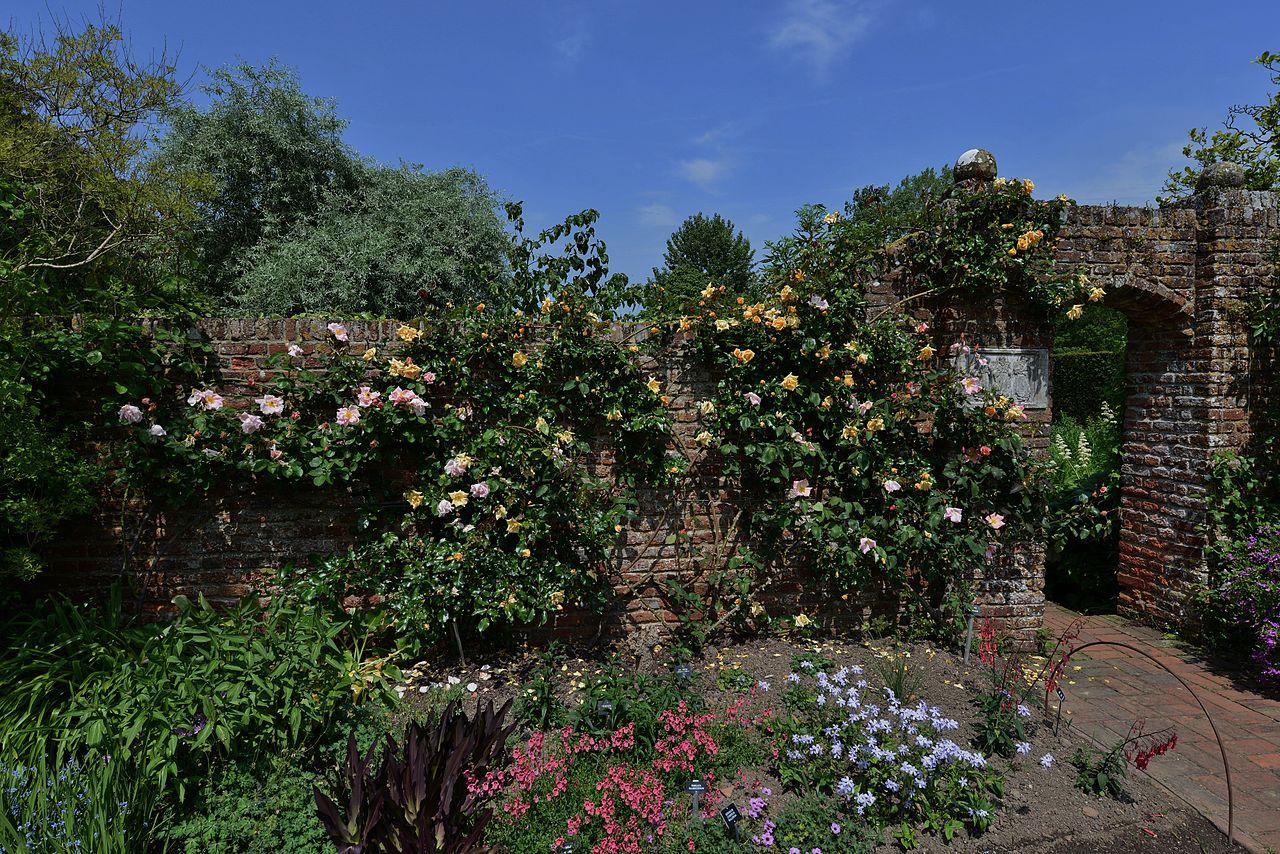 SISSINGHURST_CASTLE_Roses_at_their_best_in_June.JPG
