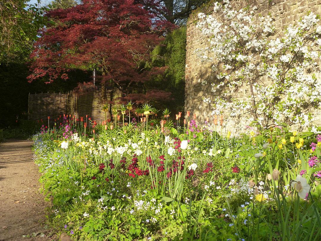 spring_garden_large.jpg