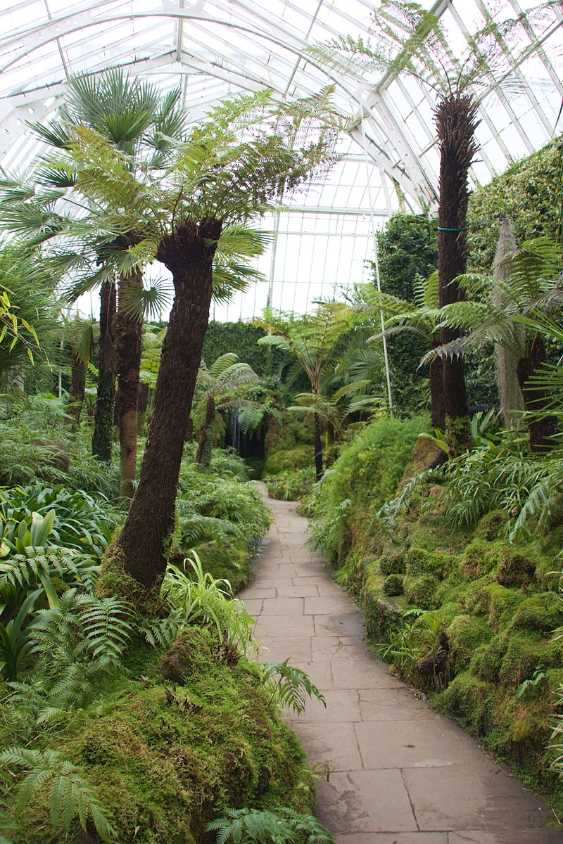 Tatton_Park_2015_33_-_Fernery.jpg