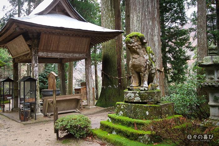 temple-sanbutsu-ji-misasa-arbres-mousse-statues.jpg