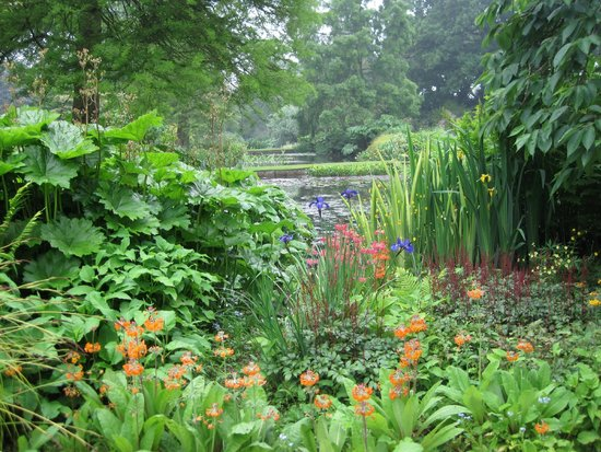 the-beth-chatto-gardens.jpg