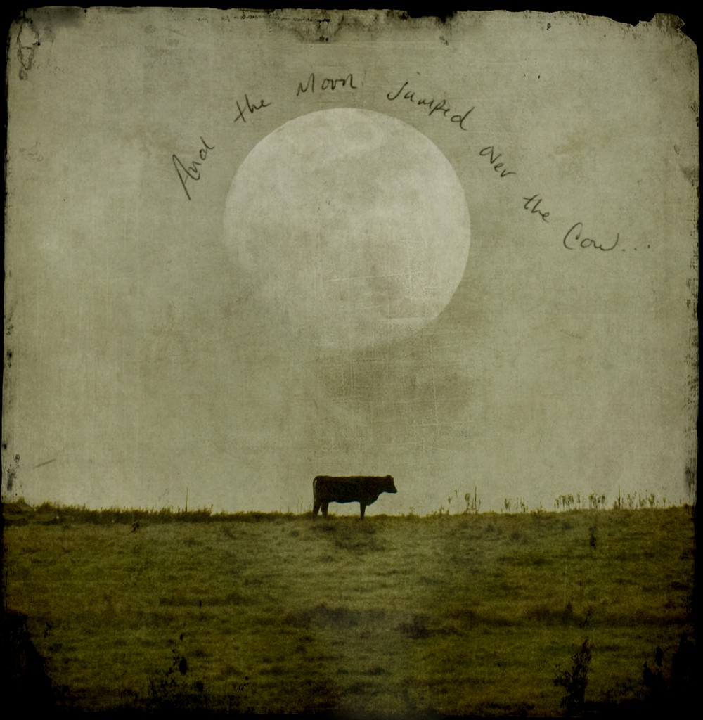 The-moon-and-the-cow...-1000x1024.jpg