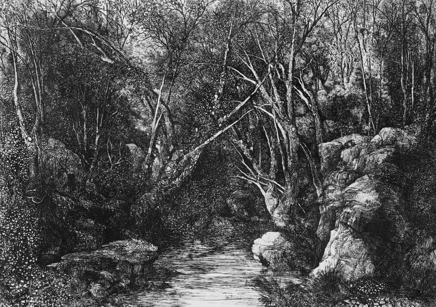 the-stream-through-the-trees-rodolphe-bresdin.jpg