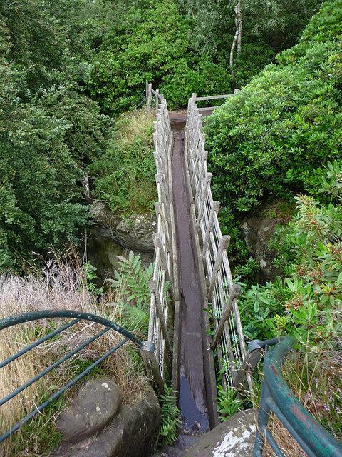 The_Swiss_Bridge,_Hawkstone_Park_-_geograph.org.uk_-_1501575.jpg