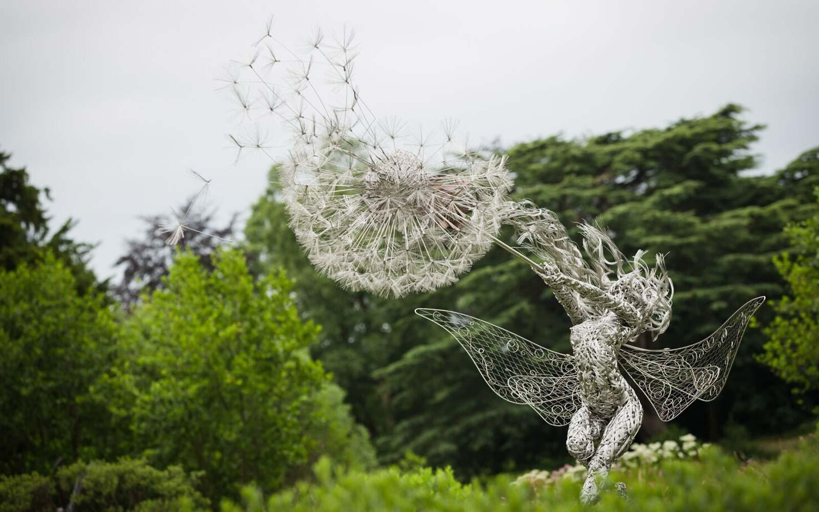 trentham-dances-with-dandelions.jpg