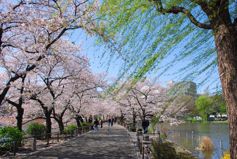 ueno-park-tokyo.jpg