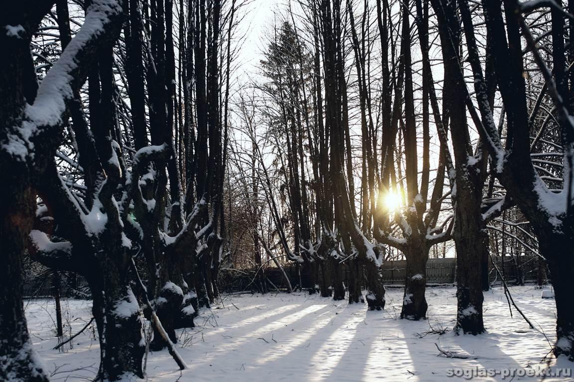 usadba-belogorka-park-2.jpg