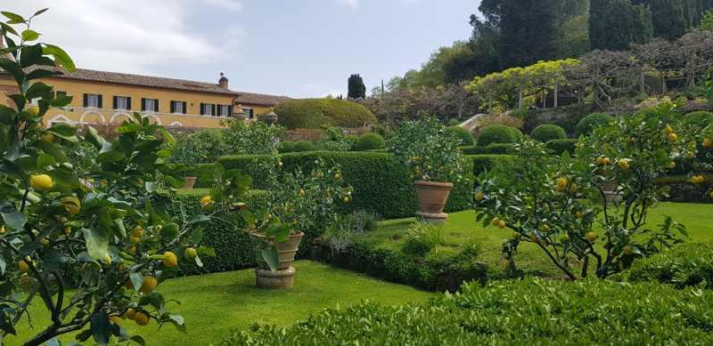 Villa-La-Foce-primo-giardino-limoni.jpg
