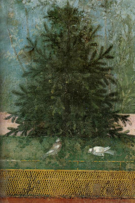 Villa_di_livia,_affreschi_di_giardino,_parete_lunga_occidegntale,_abete.jpg