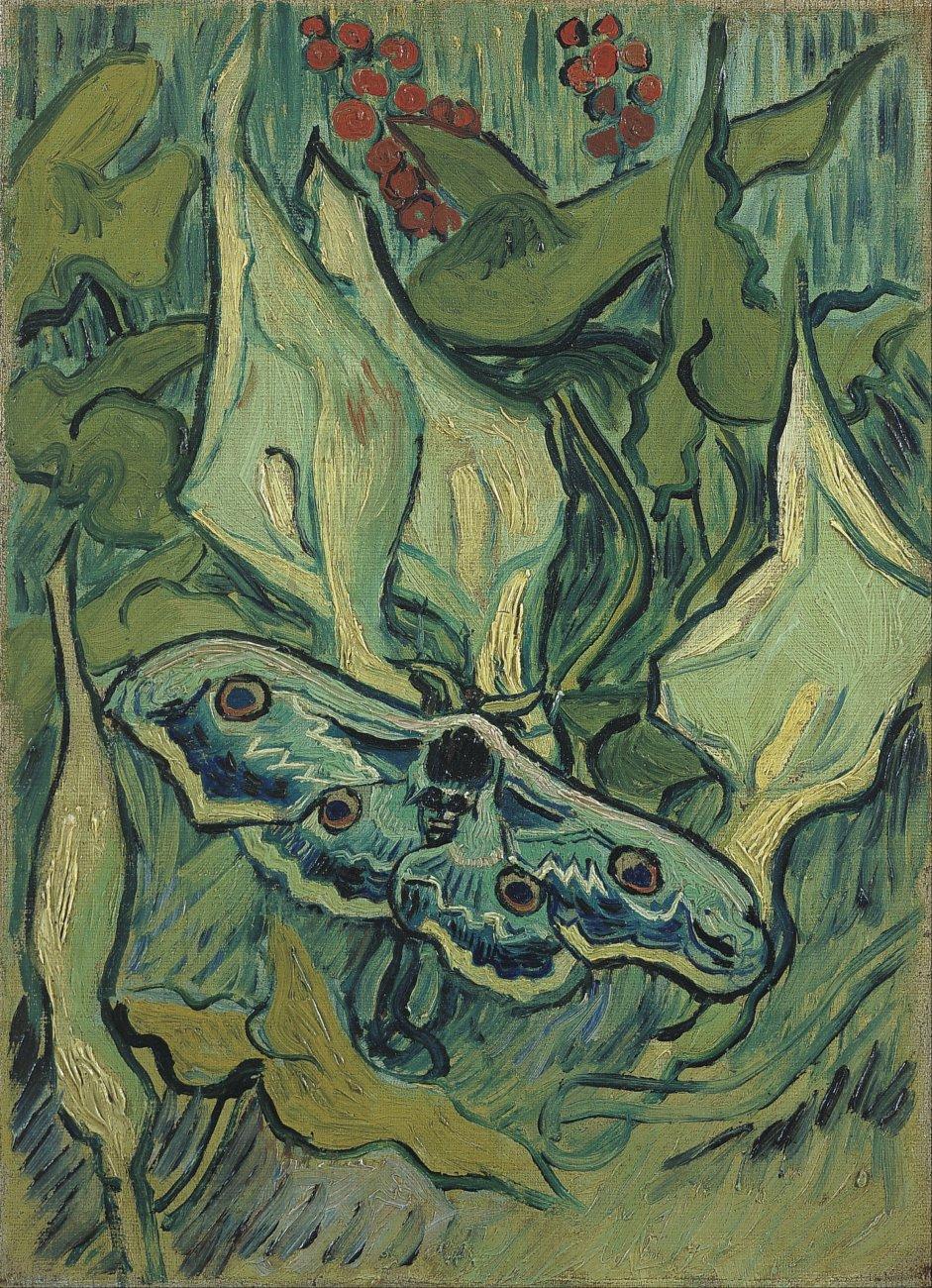 Vincent_van_Gogh_-_Emperor_moth_-_Google_Art_Project.jpg