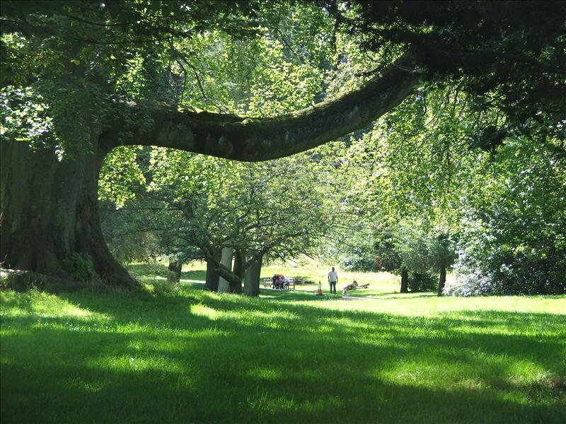 warley_woods_2_2880.jpg