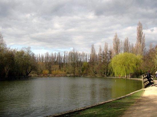 welwyn-garden-city.jpg