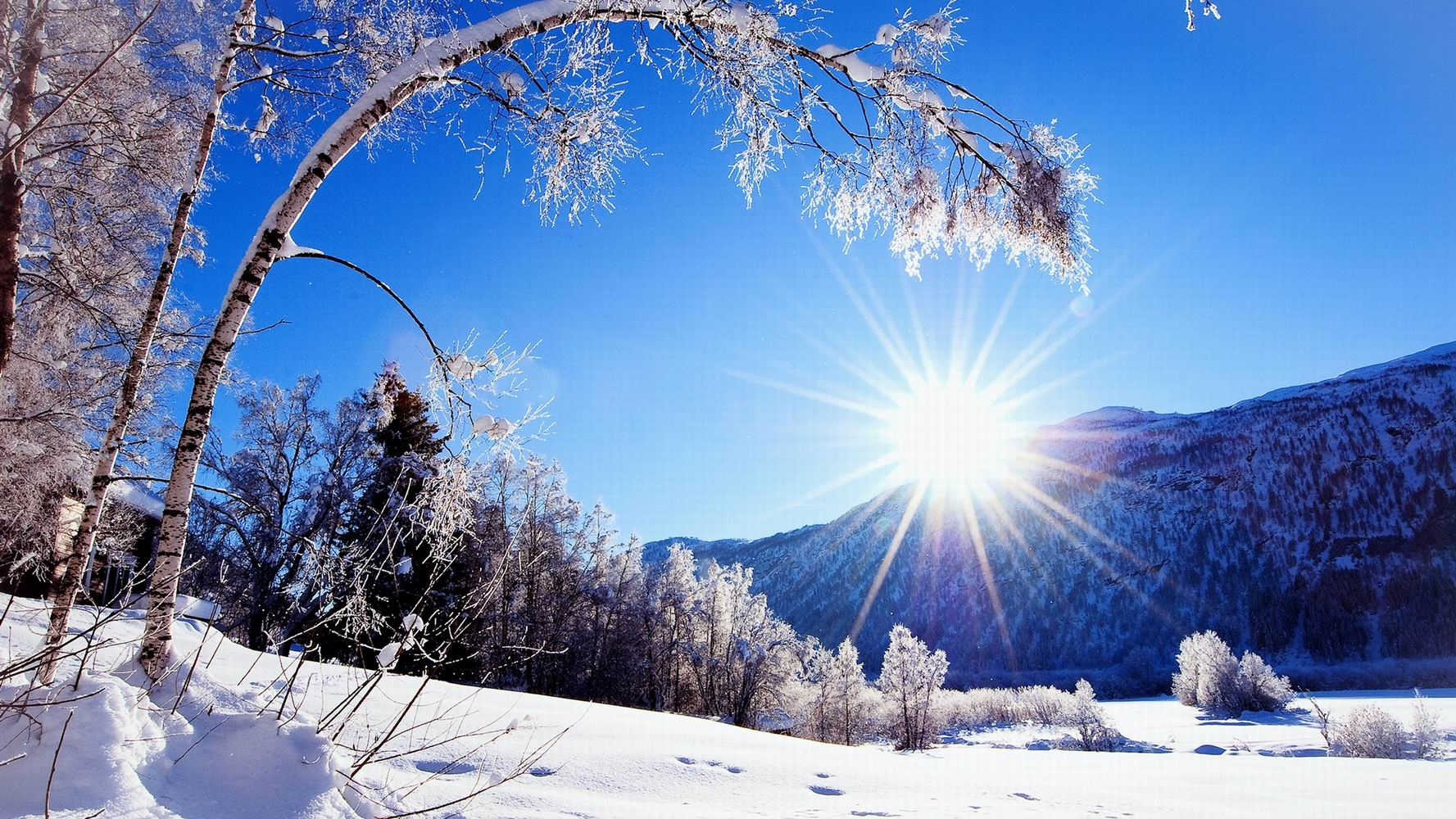 Winter-snow-mountains-and-trees-white-scenery-dazzling-sunshine_1920x1080.jpg