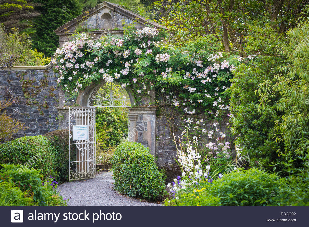 wonderful-garden-on-garnish-island-near-glengarriff-co-cork-ireland-R8CC92.jpg