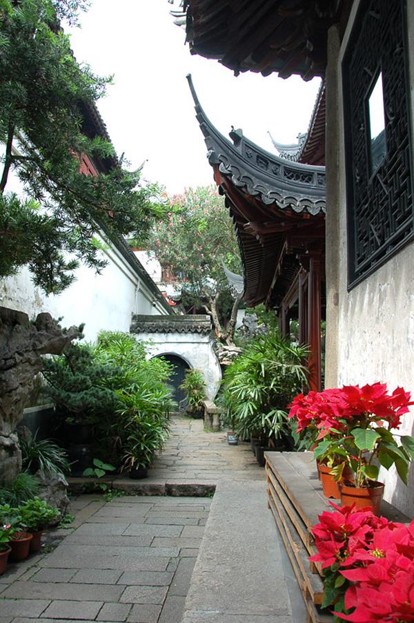 yujyuan-sad-radosti-shanxaj-9.jpg