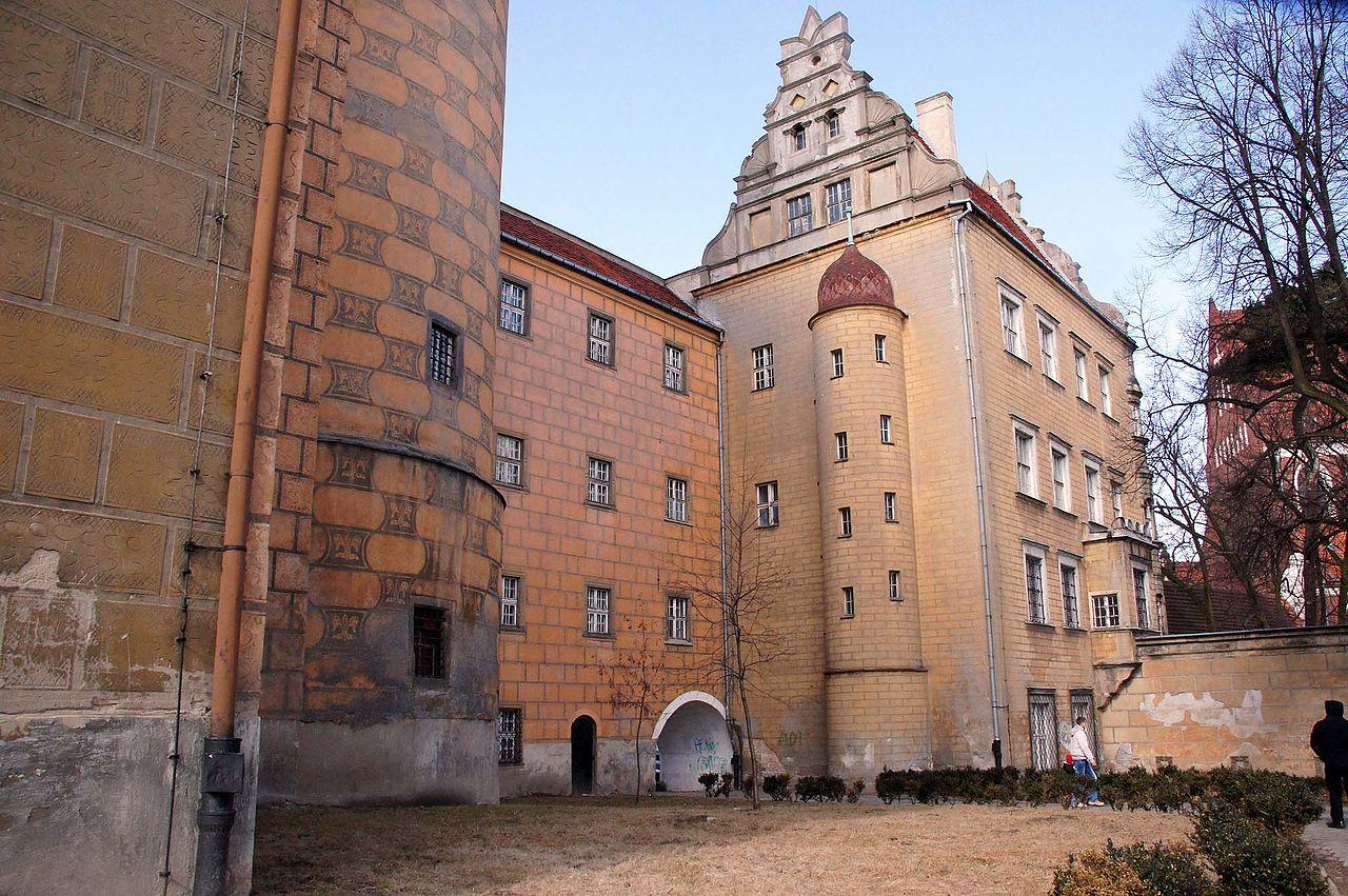 Zamek_w_Oleśnicy._Foto_Barbara_Maliszewska.jpg
